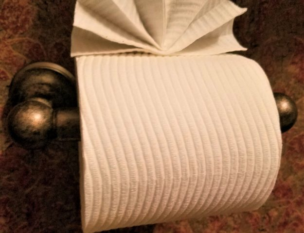 3 best toilet paper origami ideas