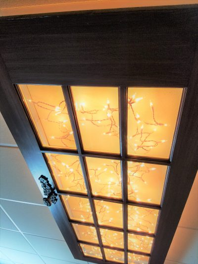 Amazing repurposed old door ceiling light fixture