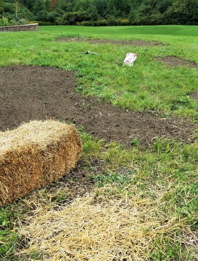 how to repair bare spots in your lawn