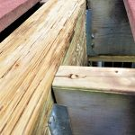 How to Prevent Wood Rot on Your Deck