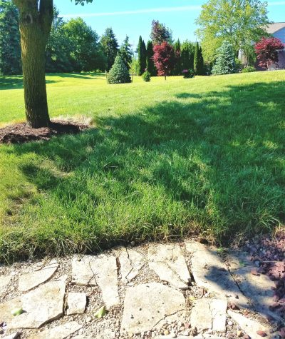 how to quickly and easily install or lay sod