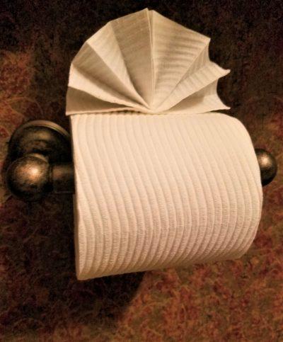 3 best toilet paper origami ideas